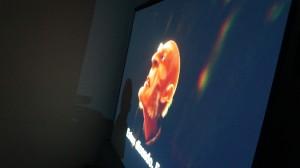 26/04/2015 Mostra de Filmes Recicláveis - Filmes 3D Fundação Blender - Parque Raul Seixas